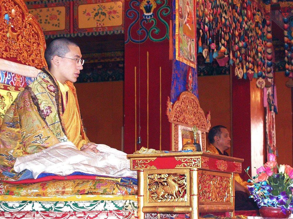 2003 the title of a vidyadhara was bestowed upon the 17th Gyalwa Karmapa by his main teacher, Künzig Shamarpa