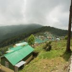 Dothray village located in Darjeeling district situated at 2.600 m above sea level